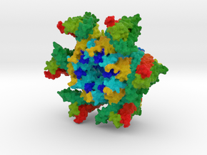SERINC from Drosophila melanogaster in Natural Full Color Sandstone