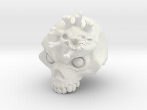 numbedskull in White Natural Versatile Plastic