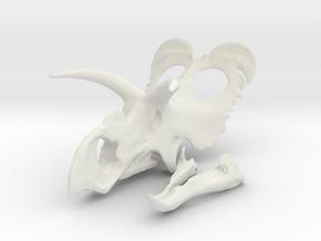 Medusaceratops Skull- 1/18th scale replica in White Natural Versatile Plastic: 1:18