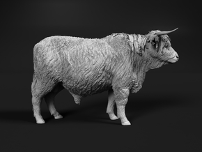 Highland Cattle 1:45 Standing Male in Smooth Fine Detail Plastic