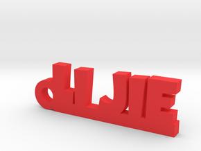 LI JIE_keychain_Lucky in Red Processed Versatile Plastic