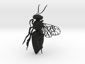 Honey Bee in Black Natural Versatile Plastic