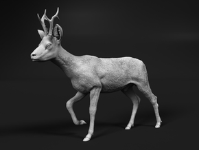 Roe Deer 1:9 Walking Male in White Natural Versatile Plastic