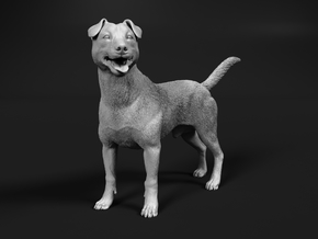 Jack Russell Terrier 1:45 Standing Male in Smooth Fine Detail Plastic