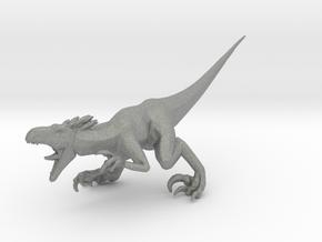 Turok Raptor dinosaur miniature fantasy games rpg in Gray PA12