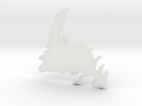 Newfoundland in Smooth Fine Detail Plastic