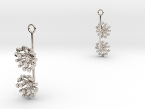 Fennel earring with two small flowers in Rhodium Plated Brass