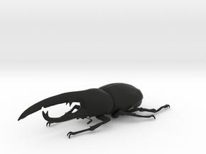 Dynastes Hercules Beatle in Black Natural Versatile Plastic