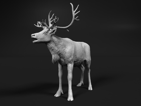 Reindeer 1:6 Female with mouth open in White Natural Versatile Plastic