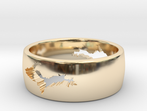 Upper Peninsula Comfort-Fit Ring  in 14K Yellow Gold: 5 / 49