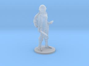 Zelda Breath of Wild miniature model fantasy games in Smooth Fine Detail Plastic