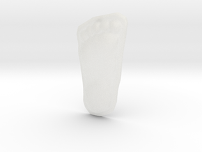 Bigfoot Footprint Cast 1/4 Scale in Smooth Fine Detail Plastic