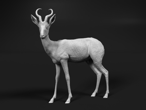Springbok 1:32 Standing Male in Smooth Fine Detail Plastic