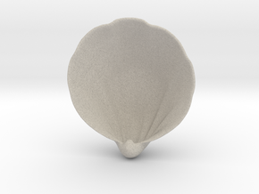 Scallop Geometric Succulent 3D Printing Planter  in Natural Sandstone