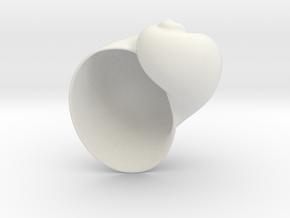 Shell Geometric Houseplant 3D Printing Planter  in White Natural Versatile Plastic