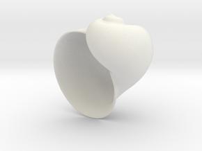4Shell Geometric Houseplant 3D Printing Planter  in White Natural Versatile Plastic