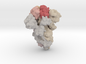 COVID-19 SARS-CoV2 Spike trimer in Natural Full Color Sandstone