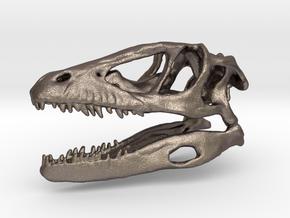 Mini Raptor Dinosaur Skull in Stainless Steel