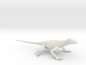 Lizard_7 in White Natural Versatile Plastic
