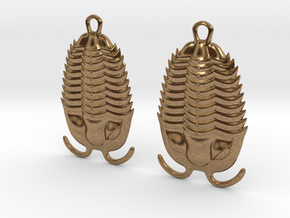 Trilobites Earrings in Raw Brass