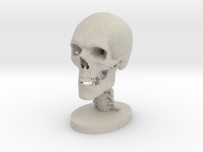1/4 Scale Human Skull in Natural Sandstone