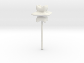 flower10 scaled in White Natural Versatile Plastic