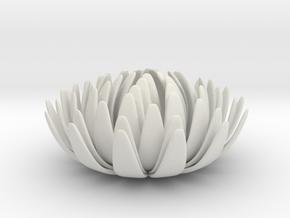 Kiku Small in White Natural Versatile Plastic