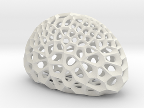 Radiolarian skeleton in White Natural Versatile Plastic