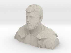 Demo H, Bust, 1/4 Scale - Sandstone in Natural Sandstone