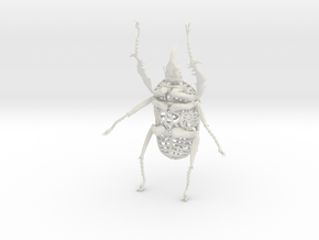 Goliath Beetle - 9cm in White Natural Versatile Plastic