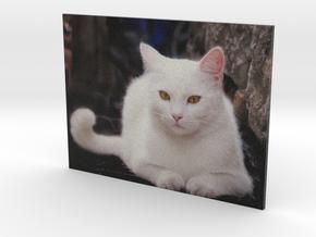 Gubbio Cat - flat - 4in in Full Color Sandstone