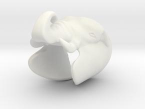 Elephant Gripper 23mm in White Natural Versatile Plastic