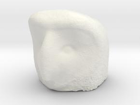 Owl head piece   in White Natural Versatile Plastic