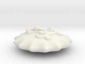 Circus Lion in White Natural Versatile Plastic