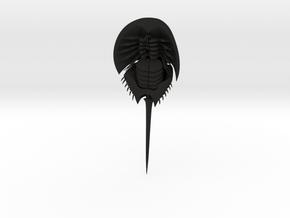 Articulated Horseshoe Crab (Limulus polyphemus) in Black Natural Versatile Plastic