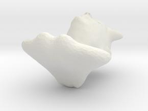 5882 in White Natural Versatile Plastic