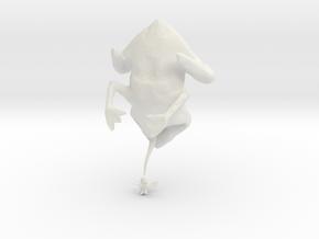 evolutionFrog_2 in White Natural Versatile Plastic