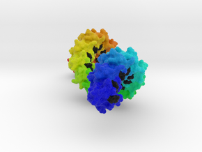 Sppr Rainbow 30cm version in Full Color Sandstone