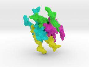 P53 Tumor Suppressor in Full Color Sandstone