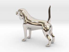 Beagle in Platinum