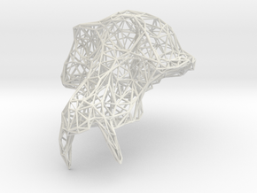 GrandSinge Wireframe in White Natural Versatile Plastic