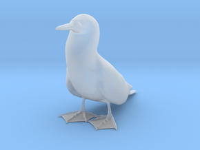 Blue-Footed Booby in Smooth Fine Detail Plastic