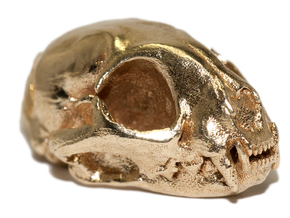 Cat skull - 45 mm in Natural Brass
