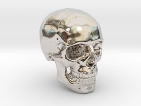 18mm 0.7in Human Skull Crane Schädel че́реп in Platinum