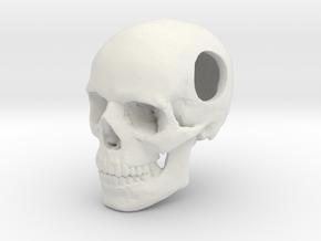 18mm .7in Bead Human Skull Crane Schädel че́реп in White Natural Versatile Plastic