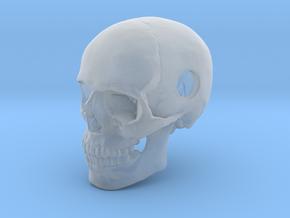 25mm 1in Bead Human Skull Pendant Crane Schädel in Smooth Fine Detail Plastic