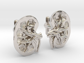 Anatomical Kidney Cufflinks in Platinum