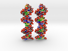 Custom DNA Molecules Ariana + Miriam, Large in Full Color Sandstone