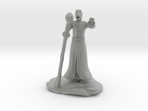 Dragonborn Wizard in Robes with Staff in Metallic Plastic