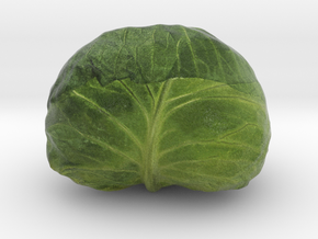 The Cabbage-2 in Full Color Sandstone
